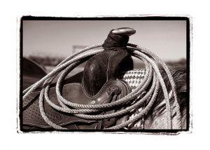 Montana-Saddle_Sepia_WebV4.jpg