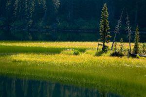 Stuart-Lake_Web.jpg