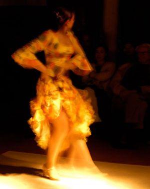 Spain1_Flamenco_960.jpg