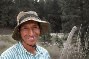 Sheepherder_Blewett_r_website-L.jpg