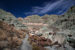 c73-BlueBasin_9167.jpg