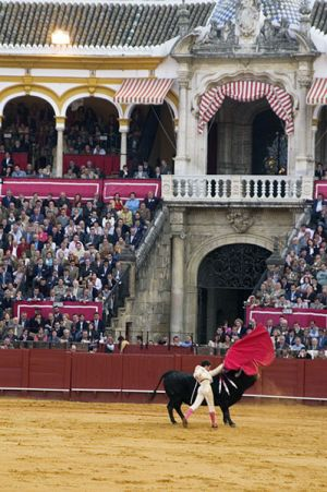 Spain_BullFighter_Web.jpg